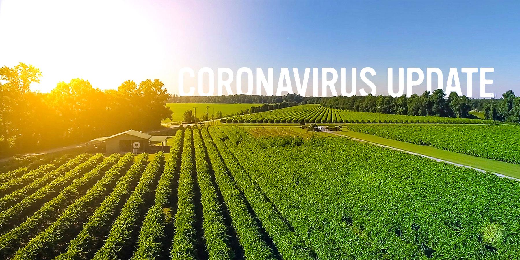 Coronavirus Message from Duplin