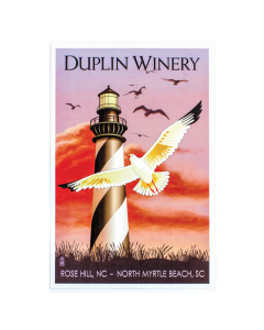 Duplin Lighthouse Postcard