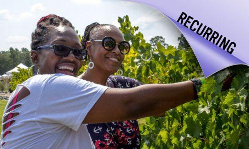 Harvest Fest Wine Adventure 2021