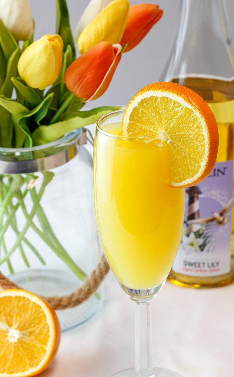 Duplin Mimosa