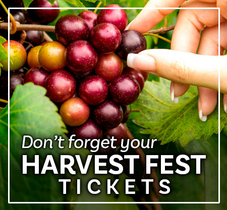Don't forget your Harvest Fest tickets